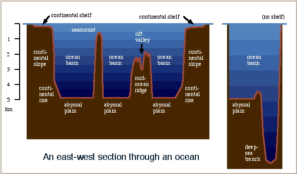 The Ocean Floor Is Structured Into Mid Ocean Ridges And Abyssal Plains. The  System Of Ridges Divides The Ocean Into A Series Of Distinct Deep Regions  Known ...